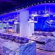 大悦洋海洋餐厅