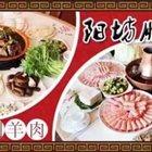 北京阳坊胜利铜火锅涮羊肉 海口店