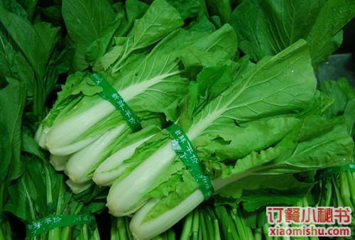 小青菜的成长周期